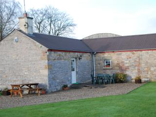 Nice Cottage with Internet Access and Television - Maguiresbridge vacation rentals
