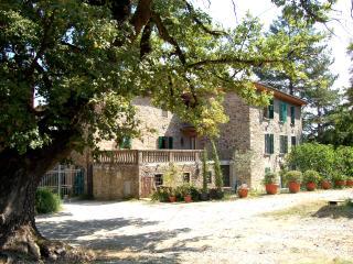 Beautiful villa for family reunions, Wi-Fi - Bucine vacation rentals