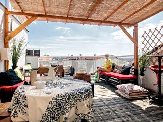 Penthouse duplex with terrace - Prague vacation rentals