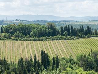 Small villa in the Chianti hills - Strada in Chianti vacation rentals