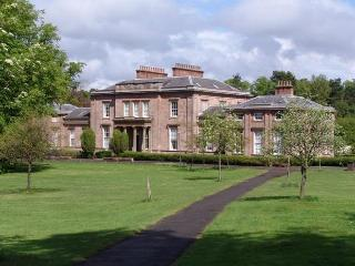 Flat available during Commonwealth Games - North Lanarkshire vacation rentals