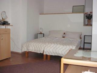 Nice 2 bedroom Condo in Novi Vinodolski - Novi Vinodolski vacation rentals