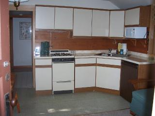 Spruce-Fishing/Family Friendly Cabin on Trout Lake - Boulder Junction vacation rentals