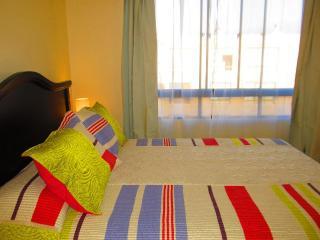 Apt_2  in Lastarria - Bellas artes/Nexo Optimo - Santiago vacation rentals