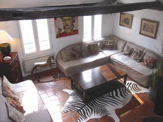 Charming apartment, on quay de Seine, in le Marais - Koh Tao vacation rentals