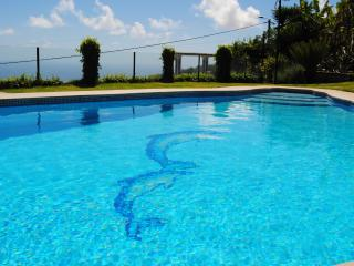 Cozy 2 bedroom Arco da Calheta Villa with Internet Access - Arco da Calheta vacation rentals
