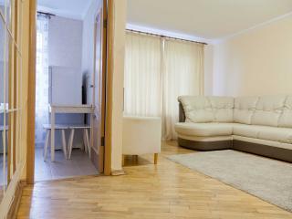 Cozy apartment on Belorusskaya - Russia vacation rentals