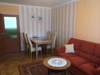 Moderne Ferienwohnung am Lipnostausee - ALLIN! - Lipno nad Vltavou vacation rentals