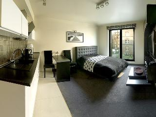 Lori Apartment - Old Town located - Krakow vacation rentals