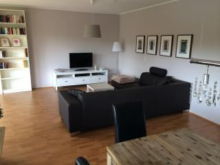 Large apartment to enjoy your stay in Cologne - Cologne vacation rentals