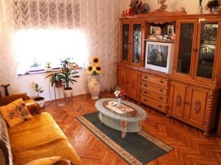 CR100cKukljica - Luxury Villa with Spectacular View! - Kukljica vacation rentals