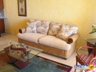 Sonoran Sun SW 411 - Northern Mexico vacation rentals