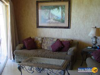 Sonoran Sun SE 102-V - Northern Mexico vacation rentals