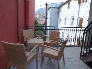 Comfortable apartment with old stone beach - Kotor vacation rentals