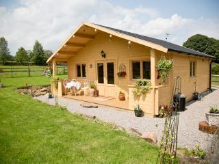 Luxury romantic logcabin located in the wye valley - Penallt vacation rentals