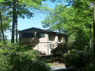 Cabin in the Sky a secluded two level mountain home with great views - Blowing Rock vacation rentals