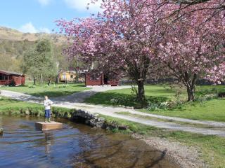 Fisherground Lodges, Eskdale, Lake District - Eskdale vacation rentals