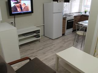 Cozy 2 bedroom Condo in Sochi with Internet Access - Sochi vacation rentals