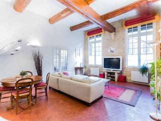 PIERRE BRUTE - T3 CENTRE VILLE - Aix-en-Provence vacation rentals