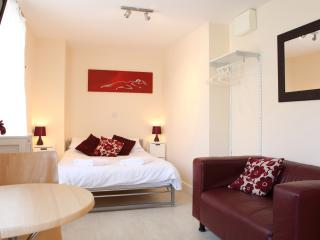 Studio apartment Newquay - Newquay vacation rentals
