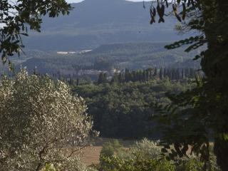 TUSCANY CETONA COUNTRY HOUSE - Cetona vacation rentals