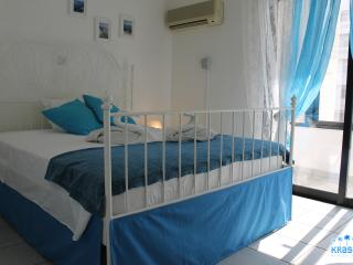 Larnaca Beach 2 B/rm With Sea View Holiday Rental - Larnaca District vacation rentals