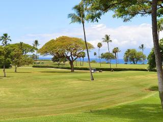Maui Eldorado: Maui Condo G109 - Kaanapali vacation rentals