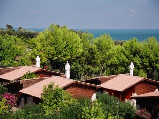 Cozy 2 bedroom Cottage in Province of Foggia - Province of Foggia vacation rentals
