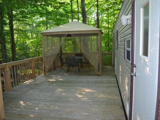 2 bedroom Cabin with Deck in Gouldsboro - Gouldsboro vacation rentals