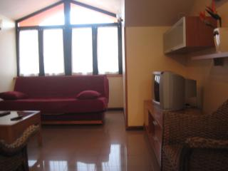 Beautiful Condo with Internet Access and Short Breaks Allowed - Arriondas vacation rentals