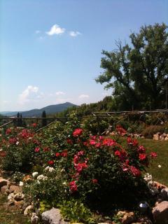 Adorable 6 bedroom Vacation Rental in Monticiano - Monticiano vacation rentals