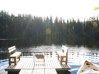 Nice 2 bedroom Cottage in Halmeniemi - Halmeniemi vacation rentals
