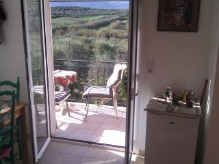 tzamika/ olive tree farm next to the sea  /apart - Episkopi vacation rentals