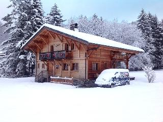 Catered Chalet Morzine - Montriond vacation rentals