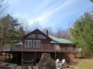 Great Sacandaga Lake Front Home with Dock Day, NY - Hadley vacation rentals