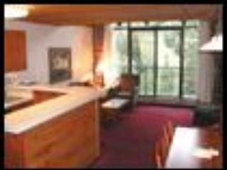 Ski in/ou condo at Iron Blosam and Snowbird Utah - Snowbird vacation rentals