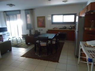 luxury 3 bedroom bugrashove tel avive - Tel Aviv vacation rentals