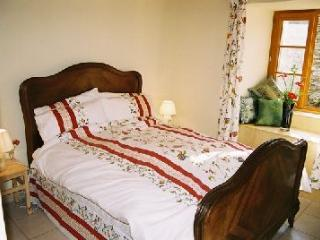 Perfect Cottage with Internet Access and Dishwasher - Sigournais vacation rentals