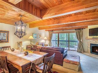 Riverside Condos #C102 - Telluride vacation rentals