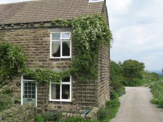 Foxglove Cottage - Ashover near Chesterfield - Ashover vacation rentals