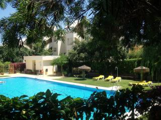 Ideal for trips to the Costa del Sol - Artola vacation rentals