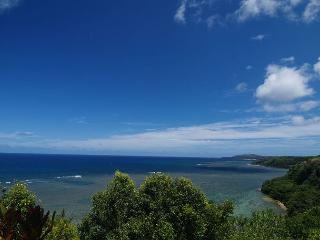 Oceanfront in Princeville - Princeville vacation rentals