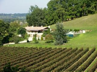 Beautiful Peaceful Villa Francesa With Large Pool - Flaujagues vacation rentals