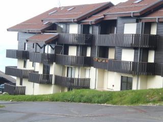 Ski apartment Le Schuss - Thollon-les-Memises vacation rentals