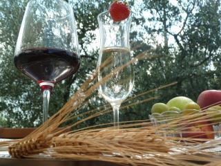 FLO-SCANY  per vivere Firenze e la Toscana vera - Tavarnelle Val di Pesa vacation rentals