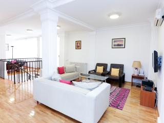 Penthouse Vracar-154m2-4br-www.urbanrealestate.rs - Belgrade vacation rentals