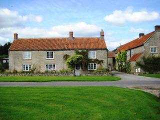 Bright 6 bedroom House in Fadmoor - Fadmoor vacation rentals