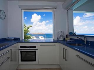Tortue (TOR) - Saint Barthelemy vacation rentals