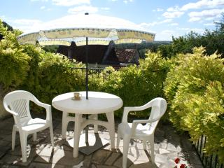 Maison Requin hillside cottage with great views - Bourre vacation rentals