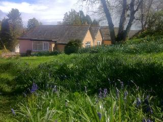 Bluebell Cottage at Westcliffe House - Rothbury vacation rentals